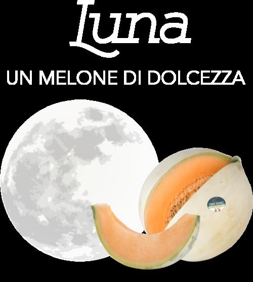 head-luna